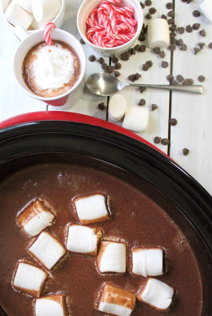 Vegan Crockpot Hot Chocolate