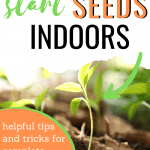 how to start seeds indoors/tips for starting seeds indoors/